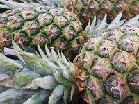 Ovoce a zelenina od A do Z - Ananas