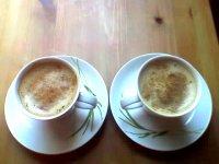 Kofein – rychlý stimulant