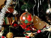 Alergie na vánoční stromeček (Ordinace.cz)