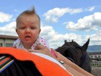 Hiporehabilitace – jak mohou koně pomoci a jak vybrat kvalitní středisko?